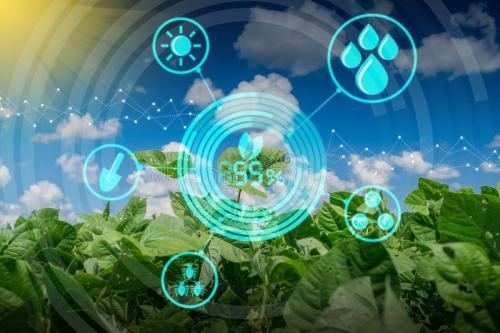 《数字乡村发展战略纲要 》发布,数字农业将迎来高速发展