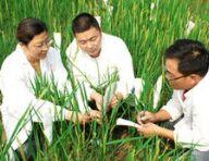 农业科研杰出人才高级研修班在广州举办