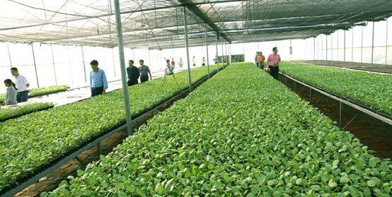 7月份全国农业农村经济运行总体平稳