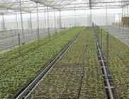重庆市经济信息委探索信息化助推三农发展