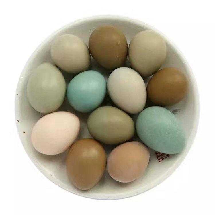野鸡蛋,帮您选择物流配送,无冷库蛋 全国发货